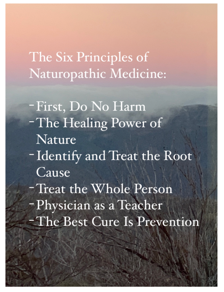 Working life of a Naturopath